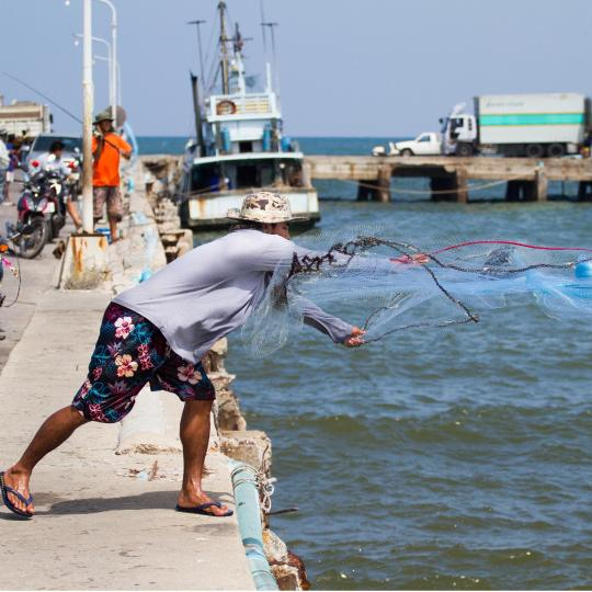 Go fishing at the pier