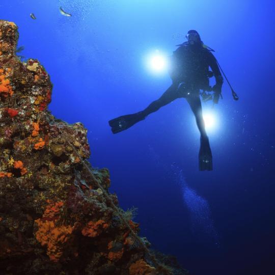 Scuba diving in marine-rich Costa Rei