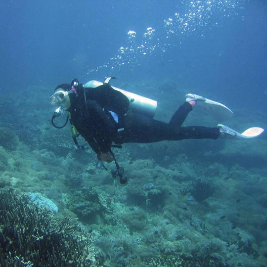 Scuba diving in Jandía