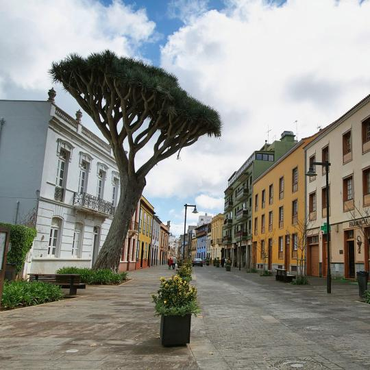 Старый город Сан Кристобаль де ла Лагуна