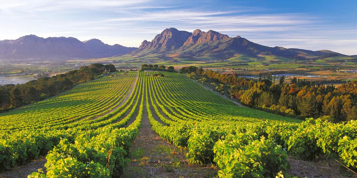"""Asara Wine Estate"""