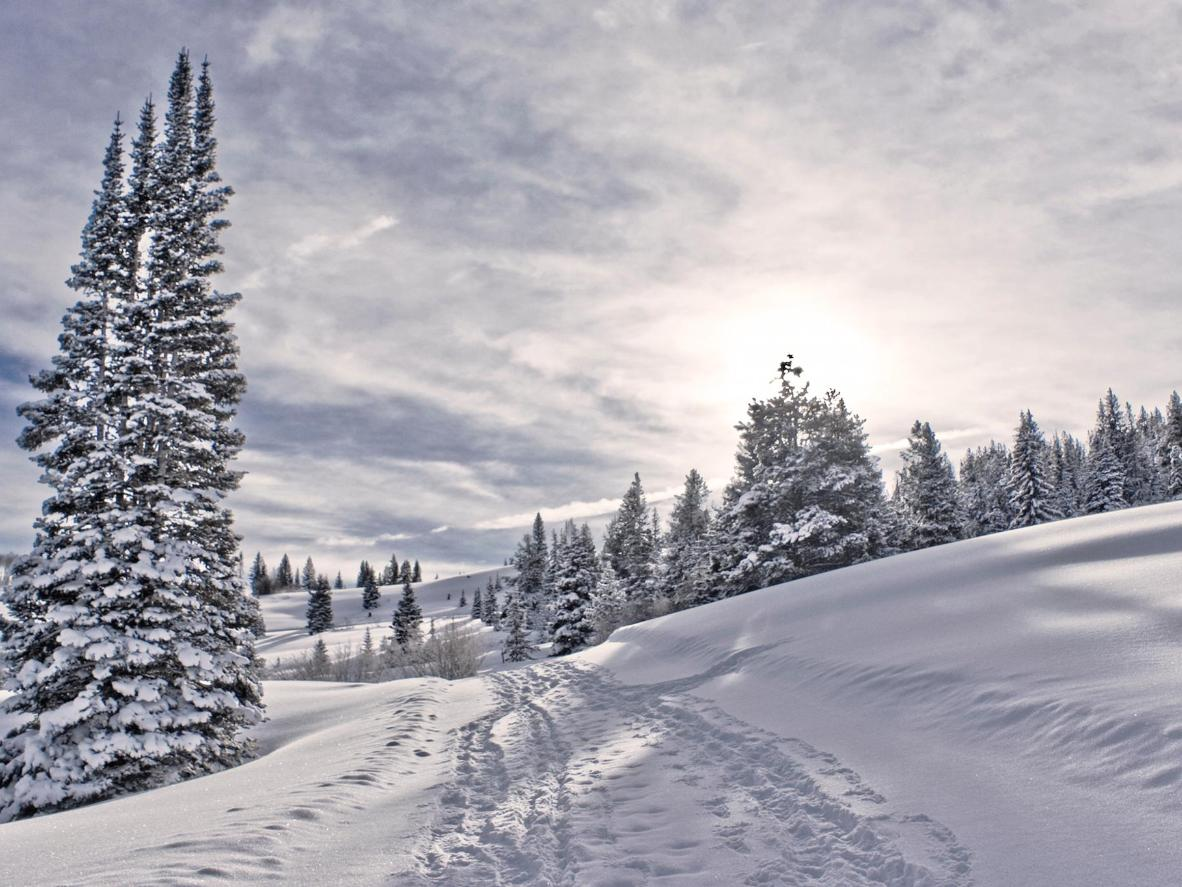The snowy landscape in Beaver Creek, Colorado