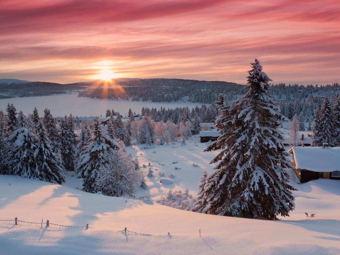 Explore the impressive 2,500km or trails in Sjusjøen