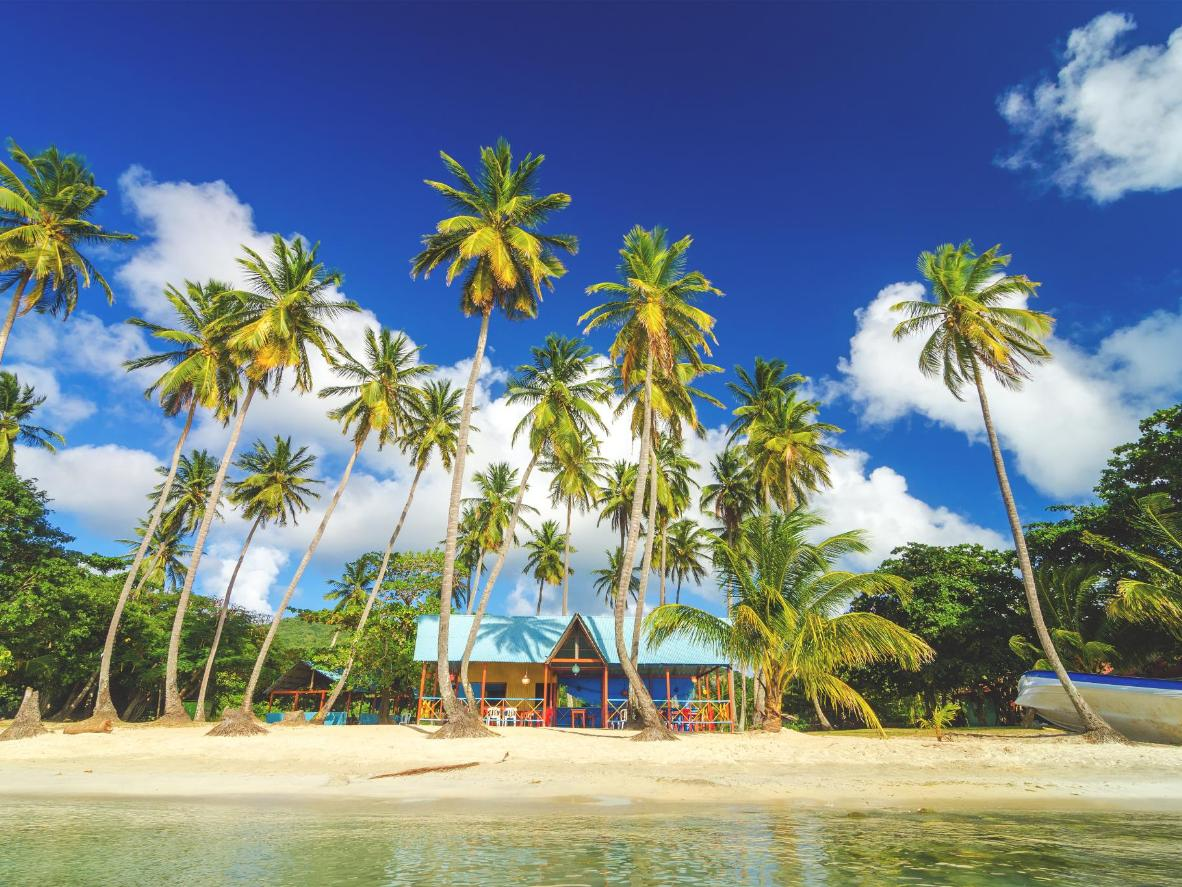 Palm-covered beach on San Andres Island