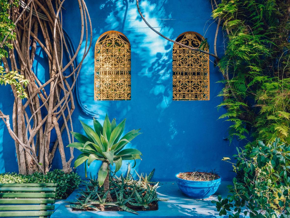 Head to the Jardins Majorelles for sensational flora, colours, and spring sunshine, Morocco