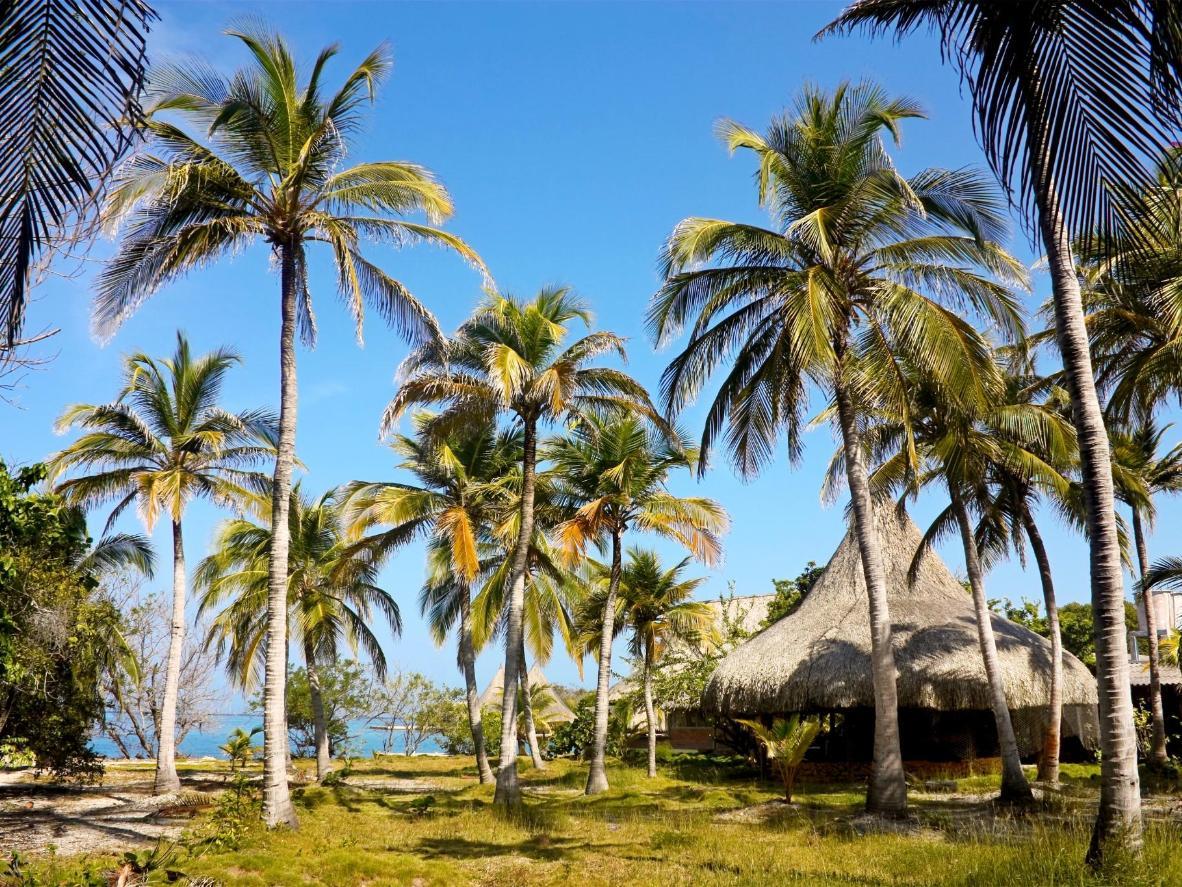 Explore coral reef, lagoons, and ocean on Isla Grande