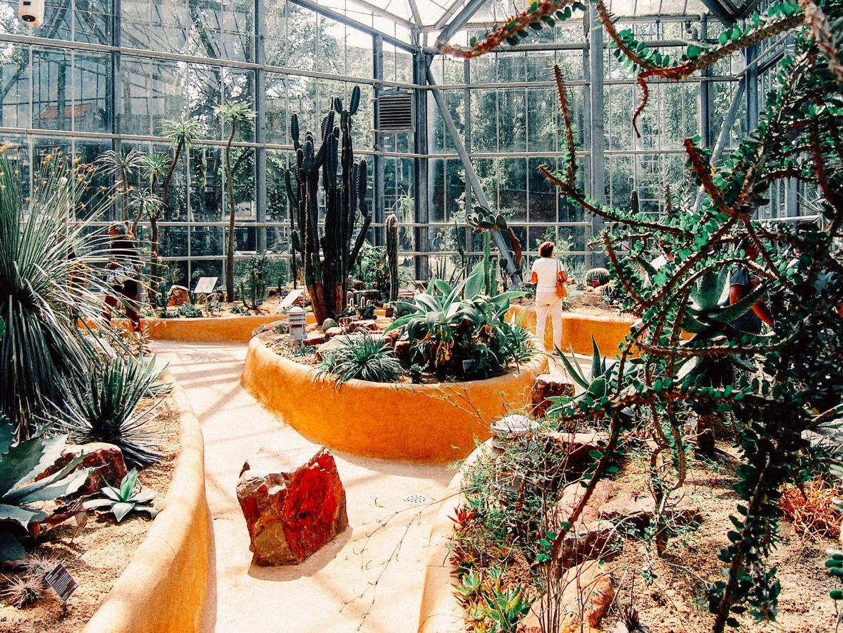 Hortus Botanicus is one of the oldest (and most impressive) botanical gardens in the world