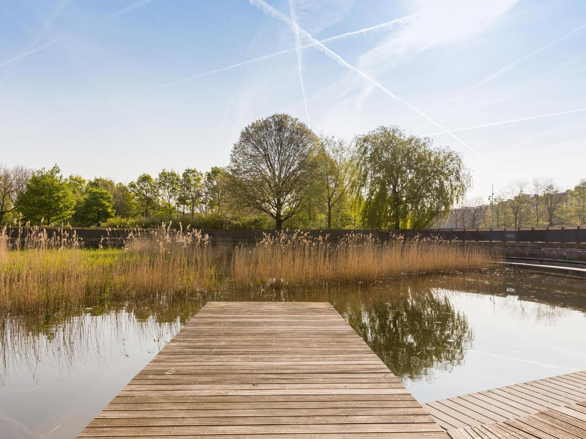 Westerpark's former gas containers have been transformed into tranquil lakes