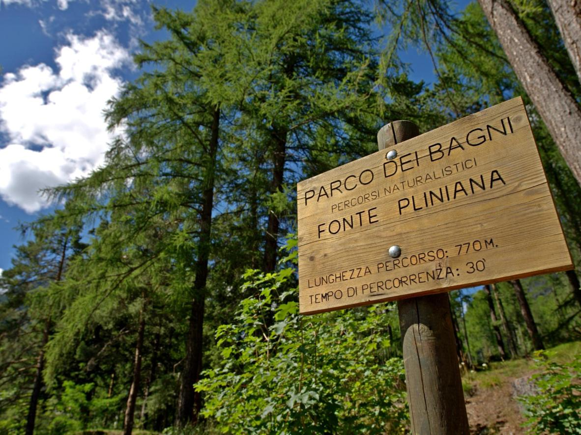 A short walk from Bagni Nuovi, Fonte Pliniana is one of nine hot springs around Bornio