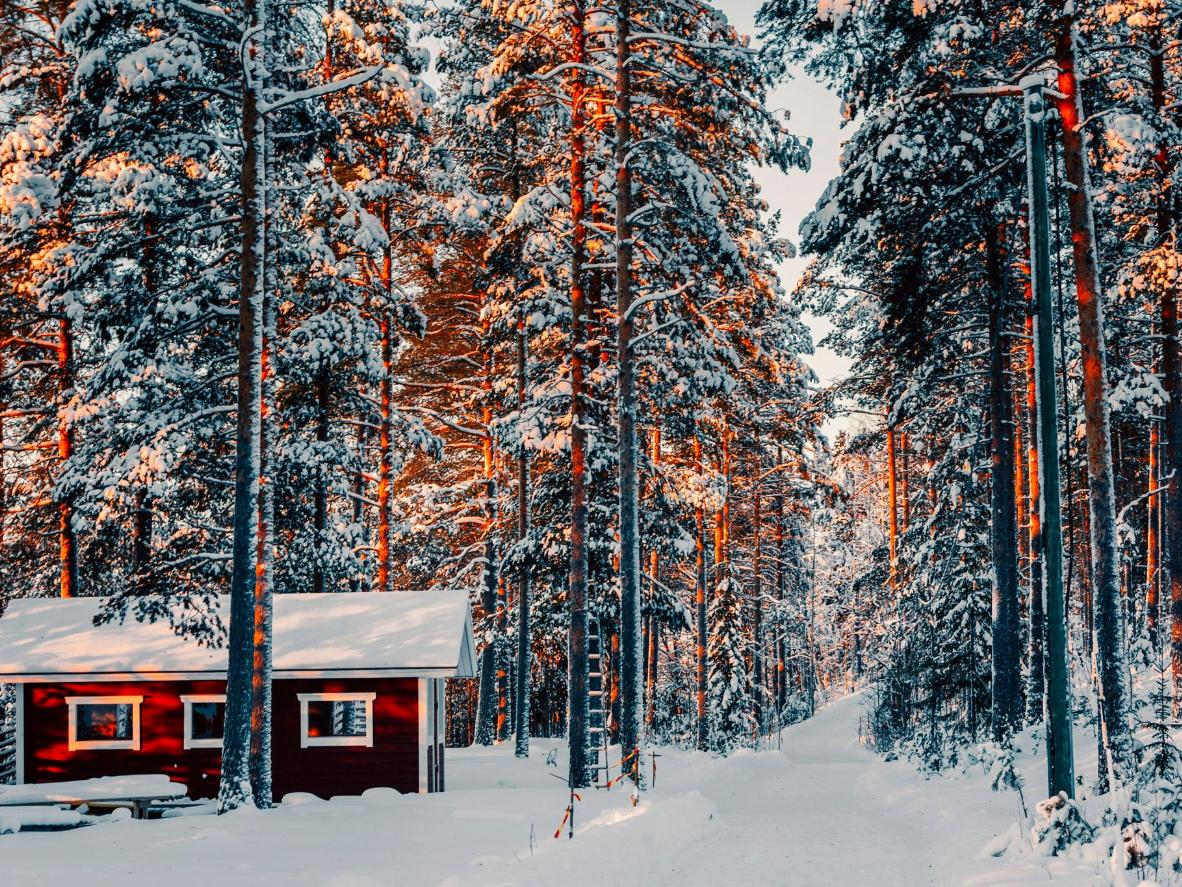 Located just outside Rovaniemi, Leirikari is home to cosy woodland cabins