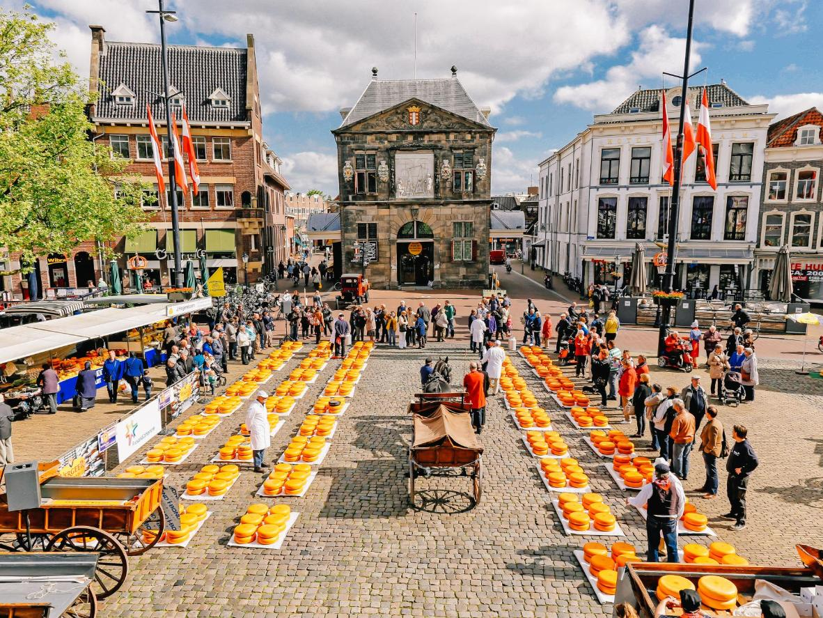 Gouda is sold by the wheel at the historic cheese market