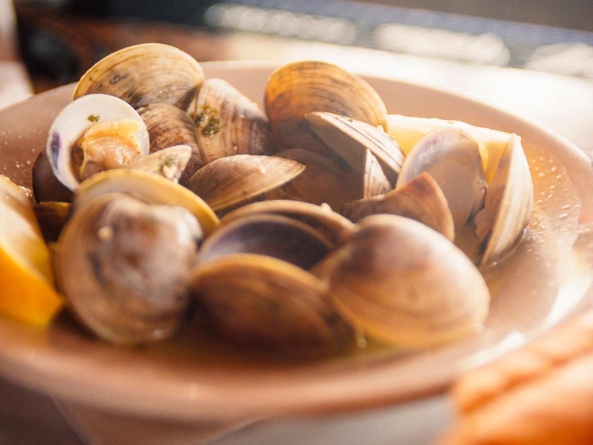 En Oban encontrarás una gran variedad de moluscos de todo tipo