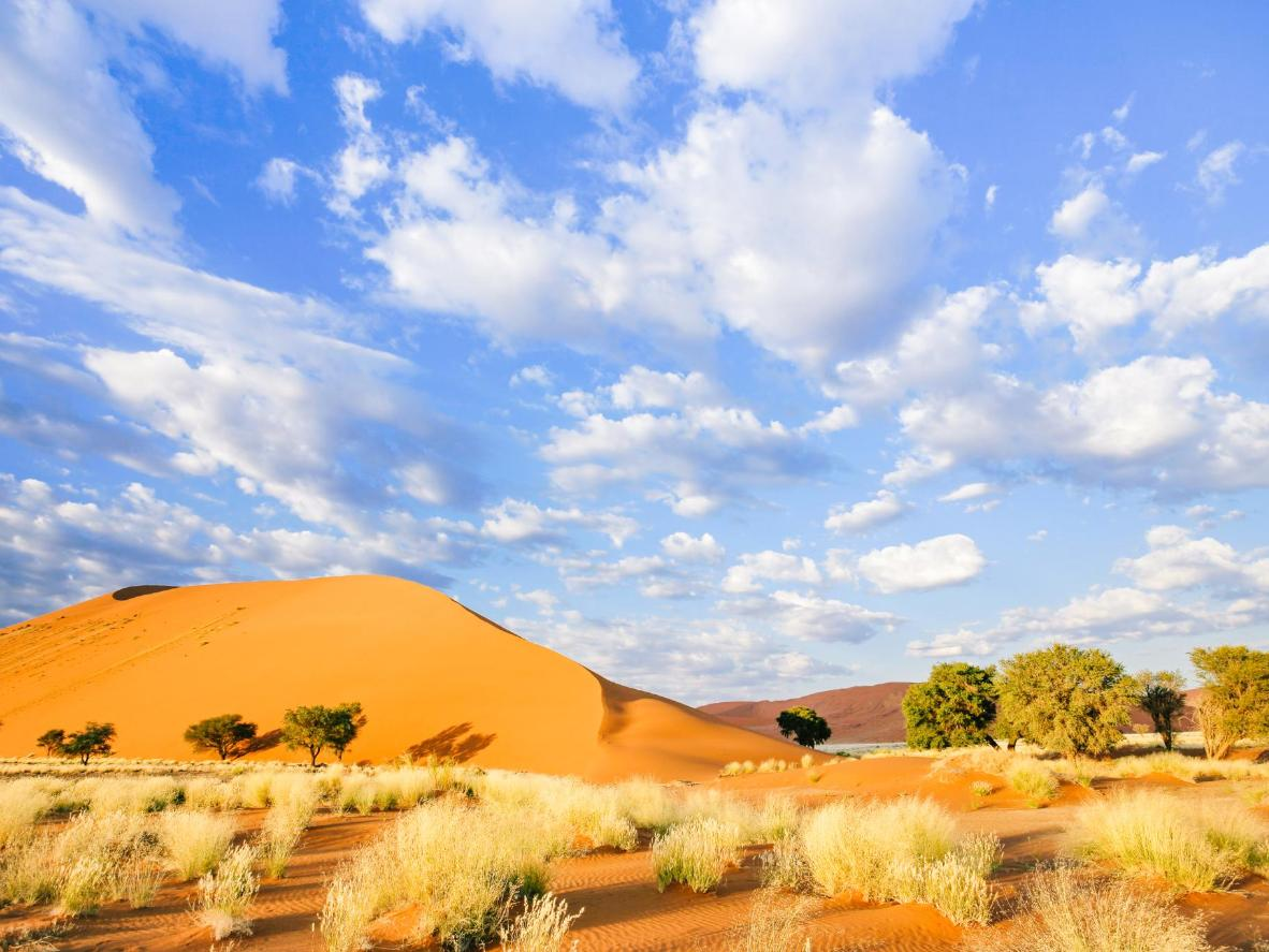 Bright blue sky contrasting red dunes in Namibia