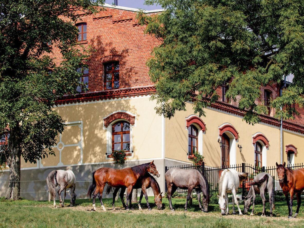Pension Rothschildův dvůr in Bela, Czech Republic