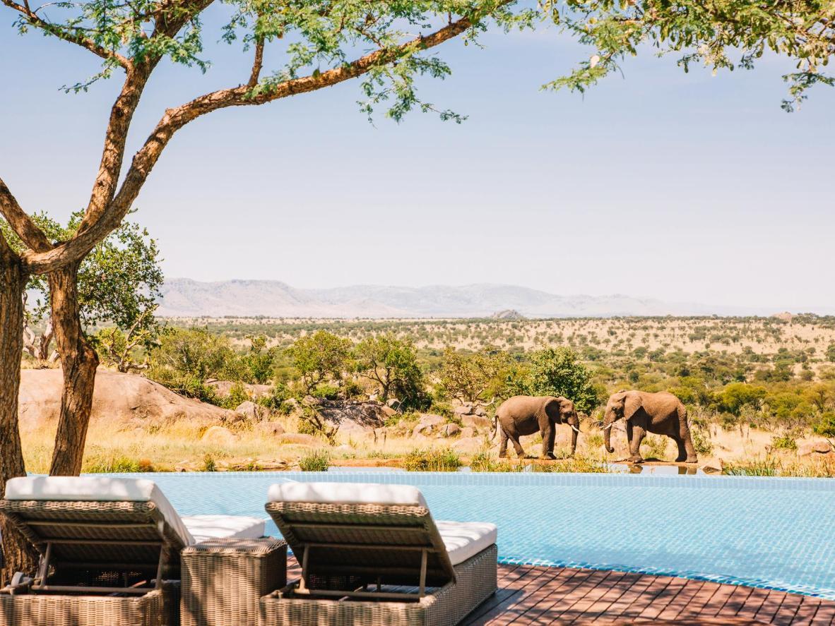 Four Seasons Lodge, Serengeti
