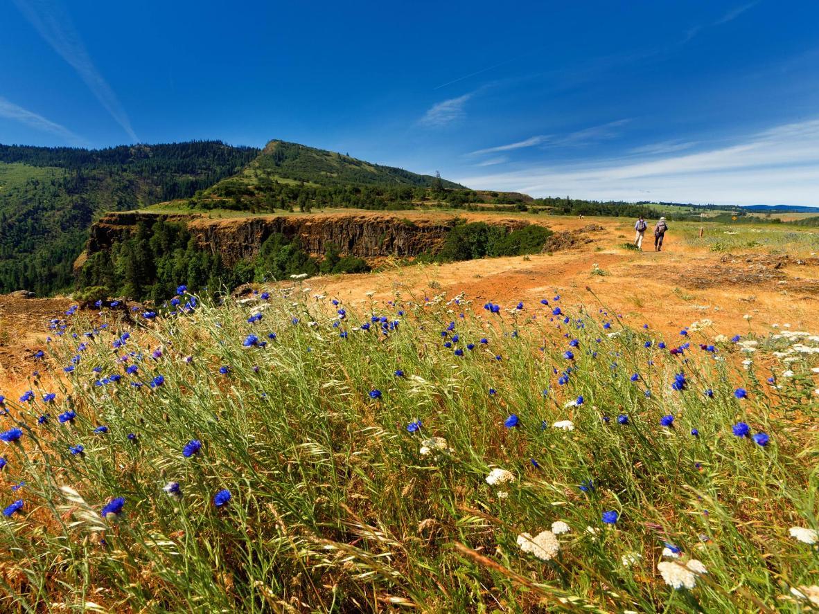 Walk the historic Oregon Trail