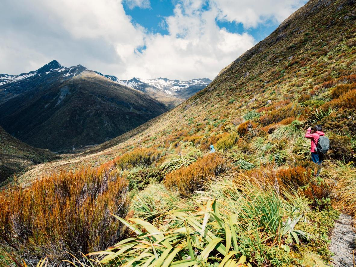 The approach to Arthur's Pass is a major highlight of the journey