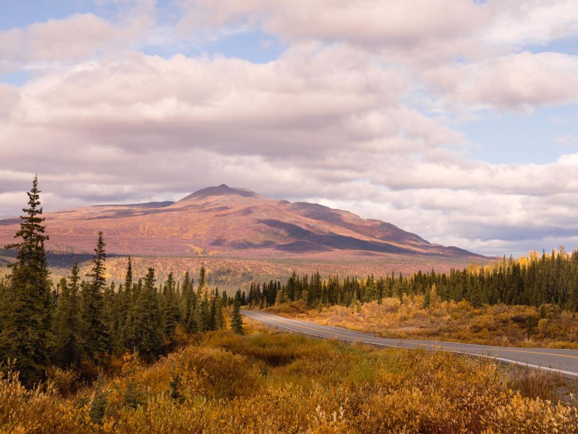 Drive down the Alaskan Highway