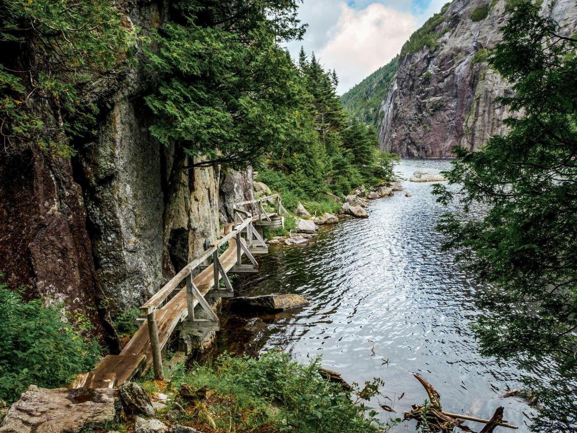 The new Wild Walk lets hikers travel along a series of wooden bridges