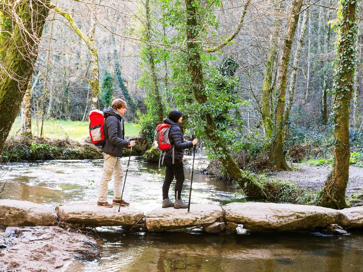 Follow the Galician section of the historic pilgrimage, Camino de Santiago