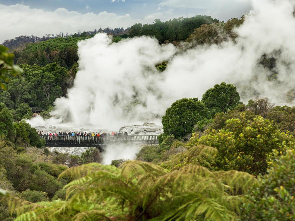 Te Puia's Whakarewarewa Valley in New Zealand