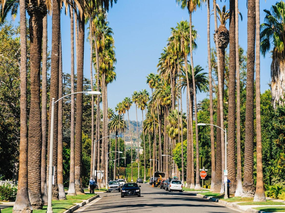 Head to the glamorous Beverly Hills