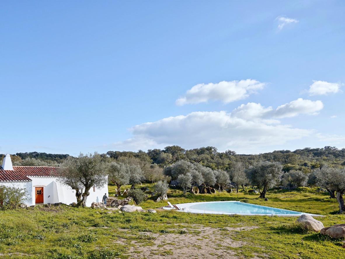 Weiße Häuser und grüne Olivenbäume sorgen für eine ruhige Atmosphäre