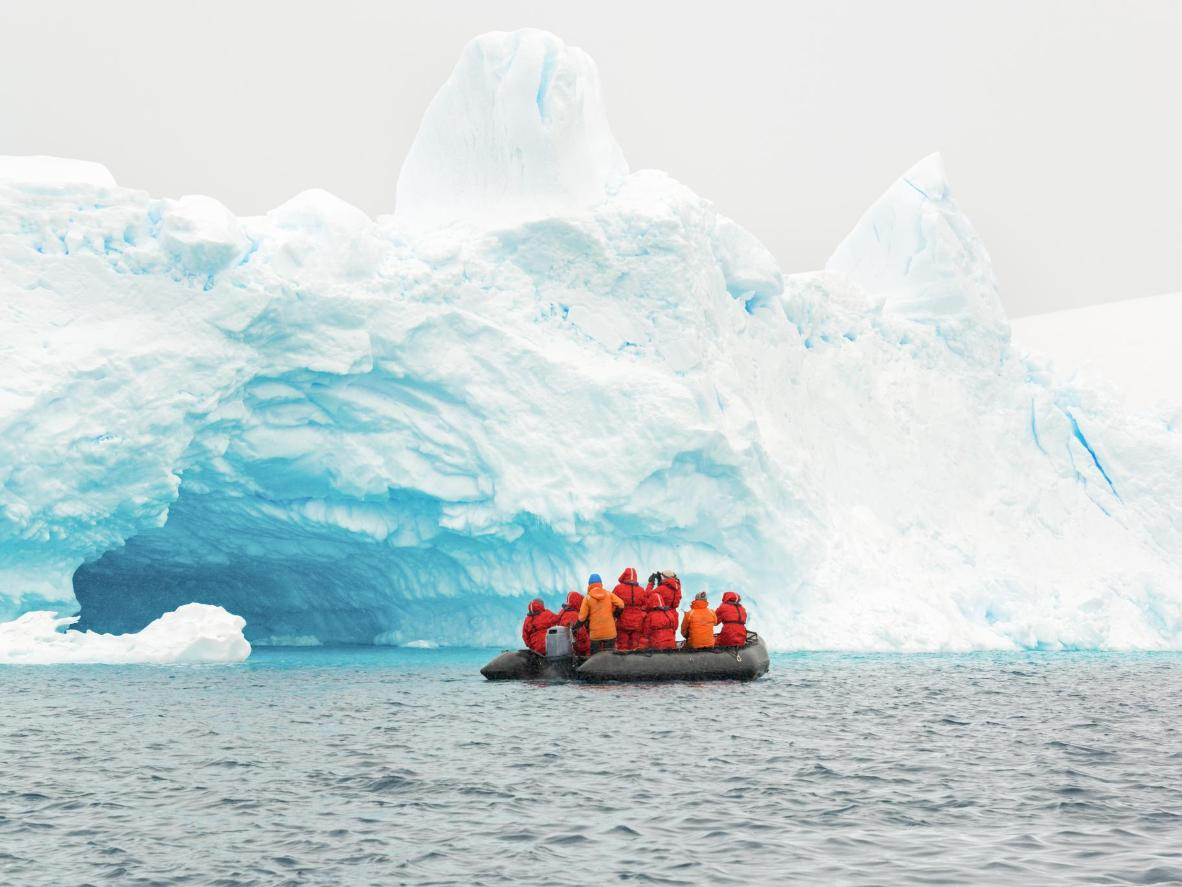 You'll be torn on what to watch – the icebergs or the whales
