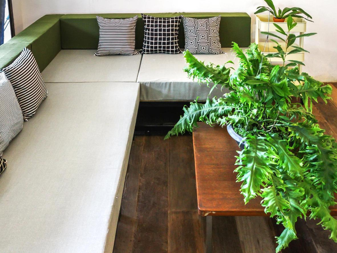 The leafy communal area at Green Sleep Hostel