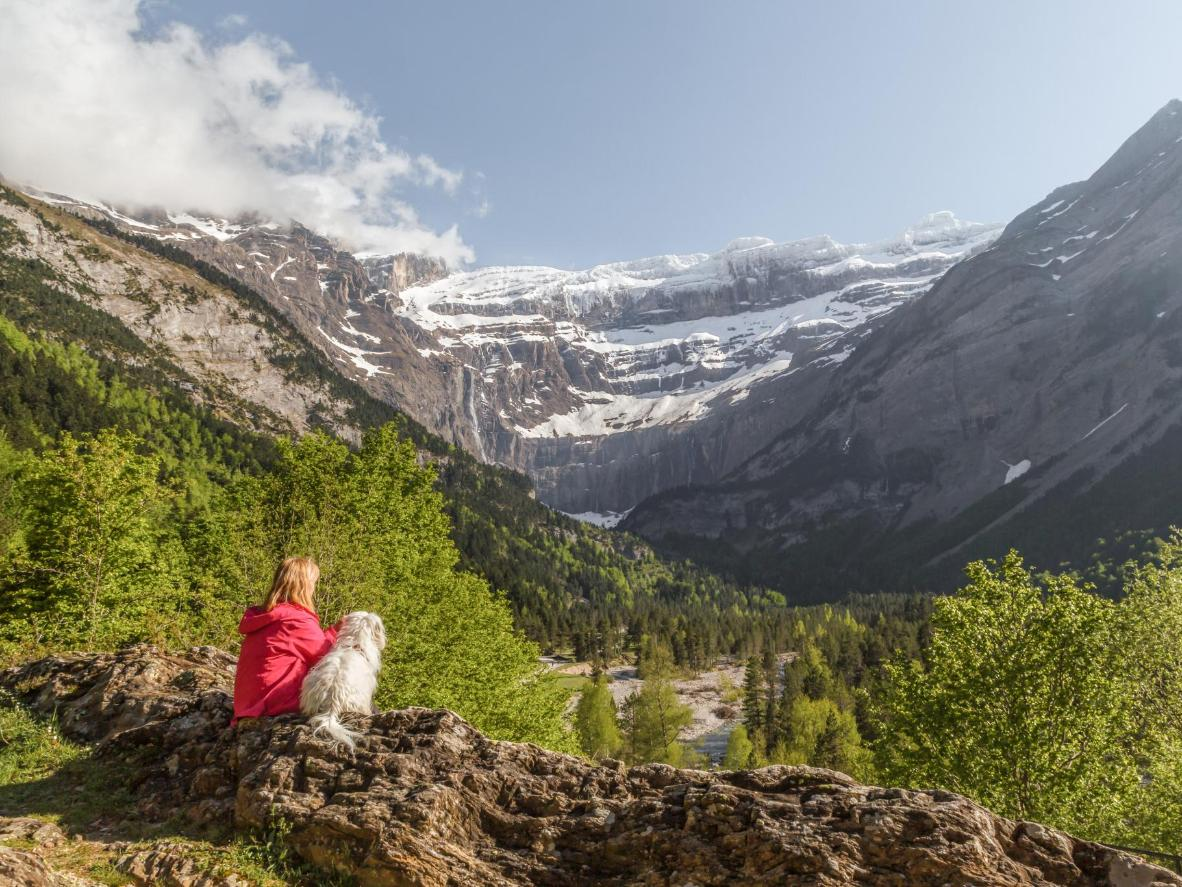 Admire the Pyrénées with your pup