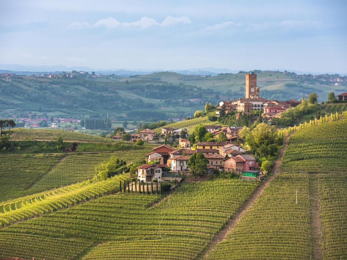 Barbaresco con i suoi vigneti in collina