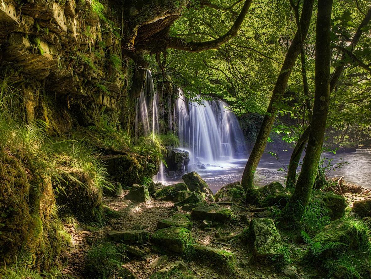 Die Lower Ddwili Falls befinden sich tief in den Wäldern von Pontneddfechan