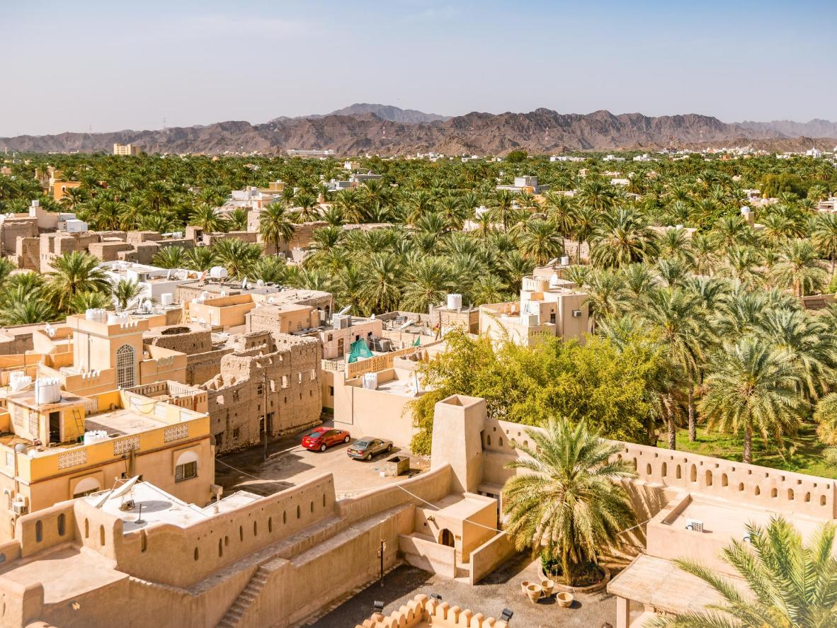Nizwa is known for its forest of date palms