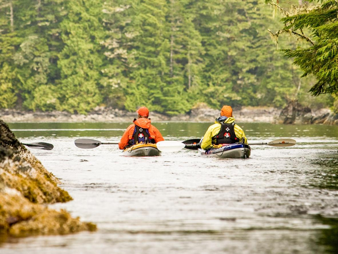 Paddle alongside otters and dolphins as you explore the untouched shores of Haida Gwaii