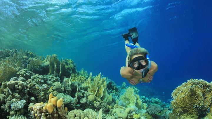 Encuentra el mejor lugar para el snorkel en Gili Trawangan