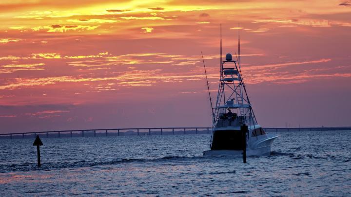 Encuentra el mejor lugar para la pesca en Islamorada