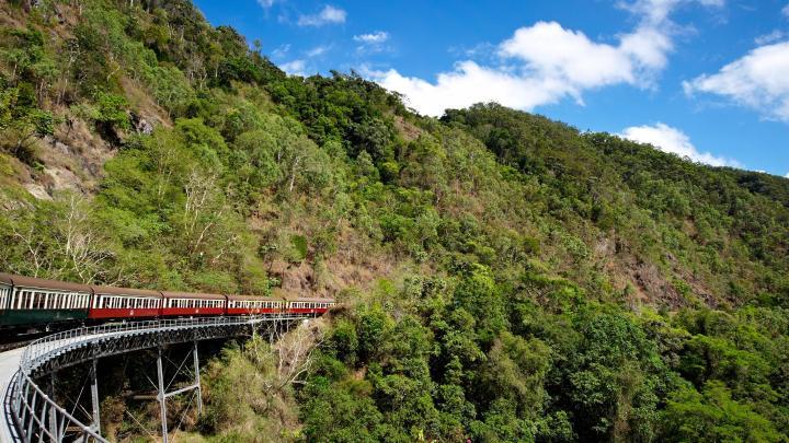 Encuentra el mejor lugar para la selva en Cairns