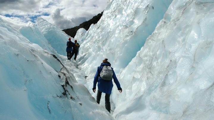 Encuentra el mejor lugar para las excursiones a glaciares en Franz Josef