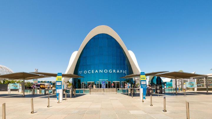Encuentra el mejor lugar para los acuarios en Valencia