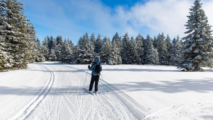 Encuentra el mejor lugar para el esquí de fondo en Seefeld in Tirol