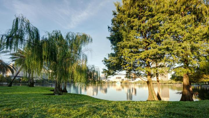 Encuentra el mejor lugar para los parques en Orlando