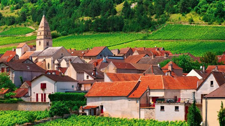 Encuentra el mejor lugar para los viñedos en Beaune