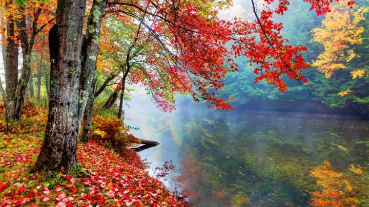 Encuentra el mejor lugar para los paisajes de otoño en North Conway