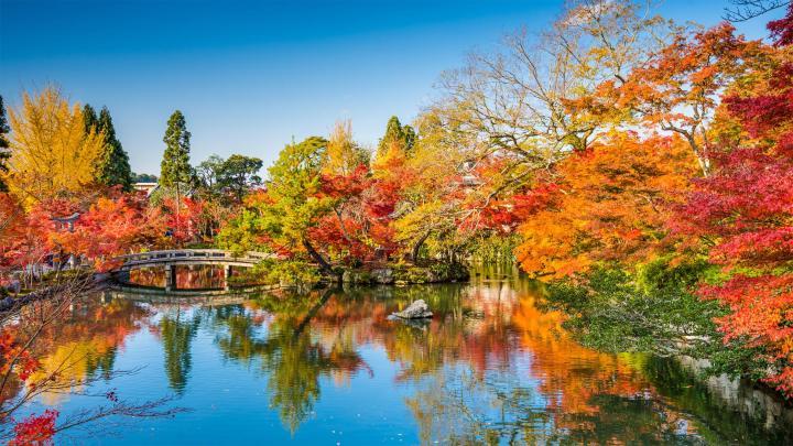 Encuentra el mejor lugar para los paisajes de otoño en Kioto