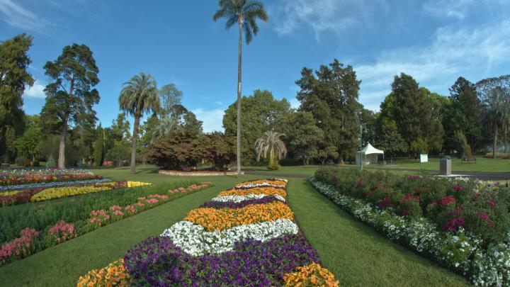 Encuentra el mejor lugar para la flores en Toowoomba