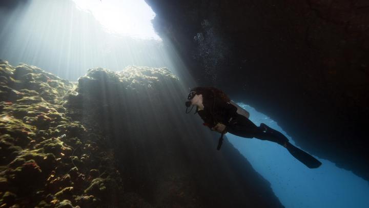 Encuentra el mejor lugar para bucear en arrecifes en Cairns