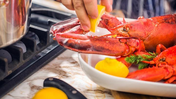 Encuentra el mejor lugar para la comida internacional en Melbourne