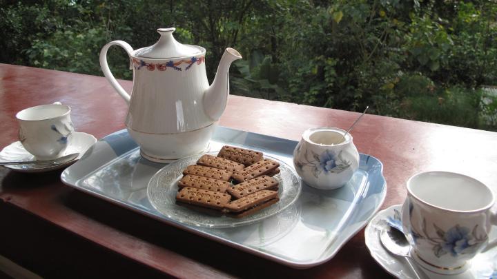 Encuentra el mejor lugar para el high tea en Munnar