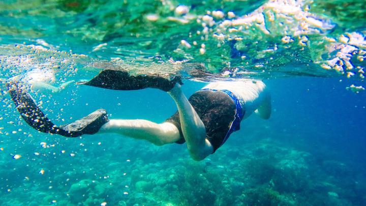Encuentra el mejor lugar para el snorkel en Lembongan
