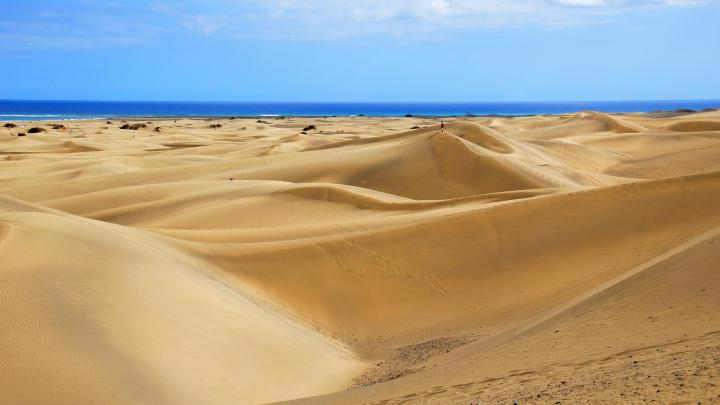 Encuentra el mejor lugar para el desierto en Jaisalmer